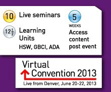 Virtual Convention 2013